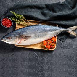 Cá Cam Nhập Khẩu 0.5-1.5kg/Con