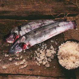 Cá Lóc Đen (Làm Sạch Còn Mang) 0.5-1kg/Con