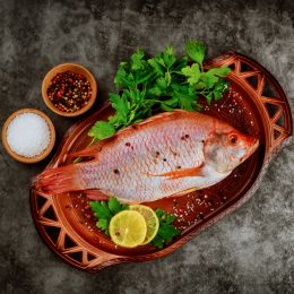Cá Diêu Hồng (Sống) 0.5-0.8kg/Con