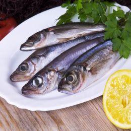 Cá Sòng Đông Lạnh 2-4 Con/kg