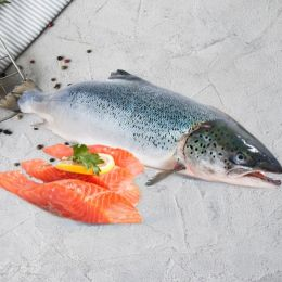 Cá Hồi Na Uy Nhập Khẩu Đông Lạnh