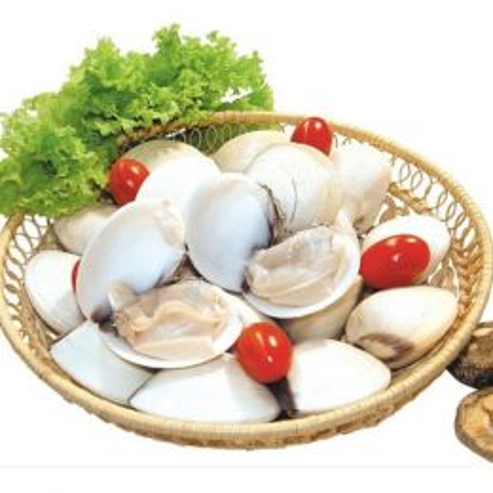 Nghêu-Ngao (Sống) 40-60 Con/kg